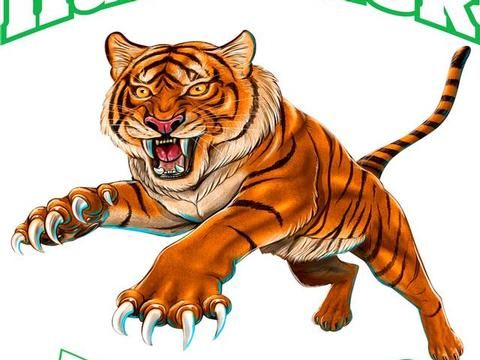 HB Jump Tiger,HB Jumping Tiger,clipart,lineart,line art,t-shirt,t-shrits,tee shrits,designs,silk,screen,teeshirts, screen-printing,embroidery,logo,mascot,,Jims,Brackenridge,PA,15014